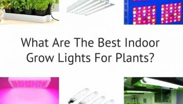 How to Make Grow Lights for Indoor Plants
